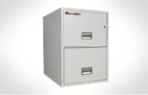 Sentry Safes 2G2500 Legal Vertical 2-Drawer Fire File Safe