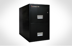 Sentry Safes 2T3100 Letter vertical 2-Drawer Fire File Safe