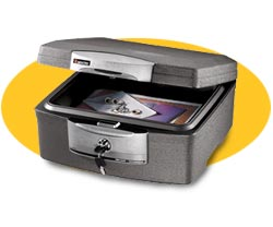 FIRE-SAFE Data Storage Security Chest: Model 1710