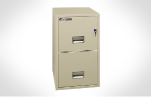 Sentry Safes 2T2010 Letter Vertical 20 Inch Deep Fire File Safe