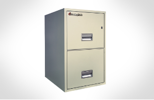 Sentry Safes 2T2500 Letter Vertical Fire File Safe