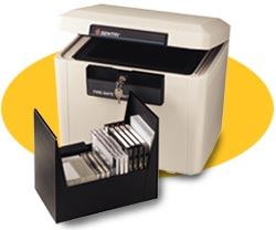 Sentry Safe: Data Storage Chest & File sentry safe